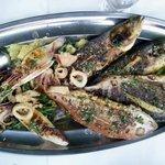 Seafood OMG platter