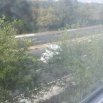 View of highway from hotel room.