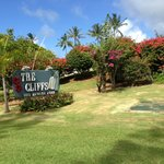 Welcome to The Cliffs!
