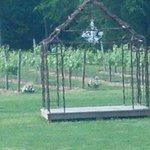 Vinyard wedding venue