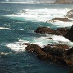 ocean scenes nearby