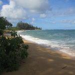 Beachboy Beach #1