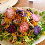 Colorful delicious salade