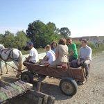 Day Trips in Transylvania