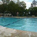 Great Pool Fun
