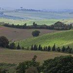 The View from Fattoria del Colle