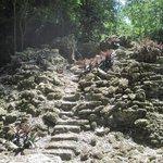 La Milpa mayan site