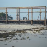 construction and seaweed
