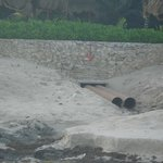 drainage pipe on beach