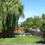 back yard from balcony