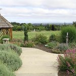 View of Oregon Garden from the resort. This is where you catch the tram to tour the Gardens