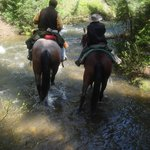 Adventurous Horseback Rides