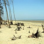 Sea Beach at Tajpur