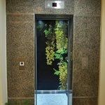 Elevator Facility
