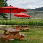 Picnic area outside the winery