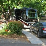 Very nice sites for all sizes of RVs