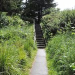 Stairs to walkway