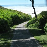 Paved footpath to beach - Gov Patterson park