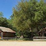 Near ranch house