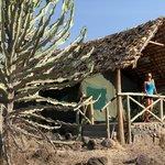 Comfortable safari tent with private veranda