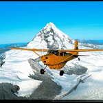 Southern Alps Air - Scenic Flights
