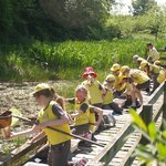 1st Weetheral Brownies enjoy the pond-dipping