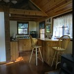 Larkspur Cabin zona cucina