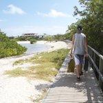 Path to Las Grietas passing by the German beach