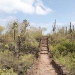 Path to Las Grietas