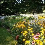 White picket-fenced country garden