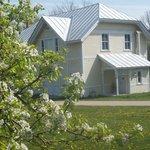 Pear blossoms & the original coach house