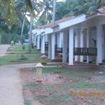 Vaidyashala for Aurvedic treatment.