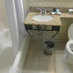 Crowne Plaza Harrisburg Bathroom