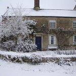 Winter Damson Cottage