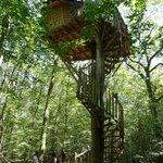 La cabane Perle - escalier colimaçon 10m