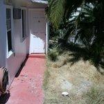 Dead grass & weeds outside guest room door