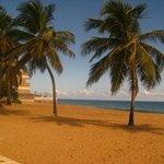 Ocean Park Beach - 2012