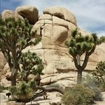 Beautiful rock formations at the Joshua Tree National Park