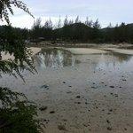 Bassa marea giugno 2013