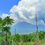 Vesuvius from Pompei