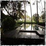 pool looking over paddies