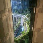 9th floor view