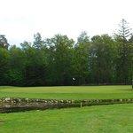 "Playing golf at ""Saxnas Golf Course"", at Oland"