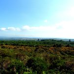 View of Melleray in the distance from Knockmealdown's