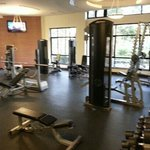 Free weights section of the gym
