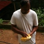How to cut and clean a jackfruit