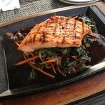sizzling salmon salad with Asian pepper sauce