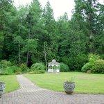 View from Inn of back garden toward woods