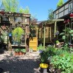 Greenhouse Garden.