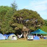 Camping in the Top Campground at Aroha Island